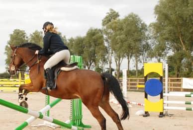 Meadows Equestrian Centre