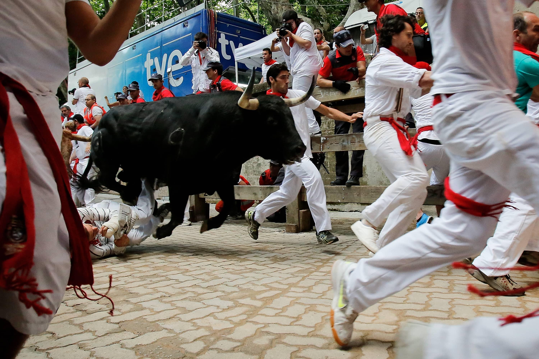 Pamplona Bull Run