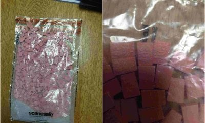 Newry drugs seized