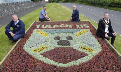 Tullylish flowerbed