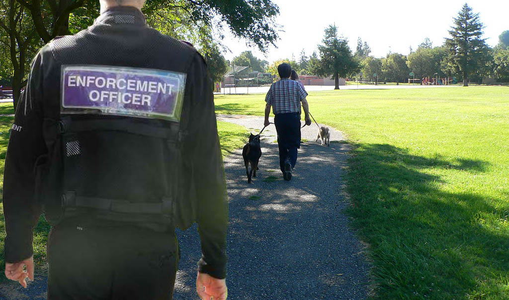 Enforcement dog fouling