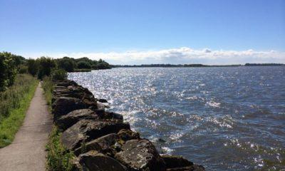 Shore of Lough Neagh at Oxford Island